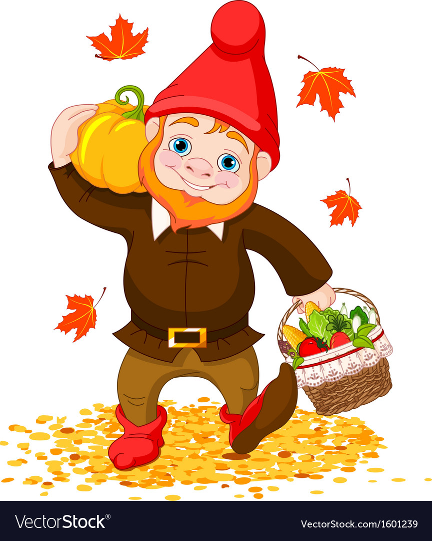 Garden Gnome with harvest Royalty Free Vector Image