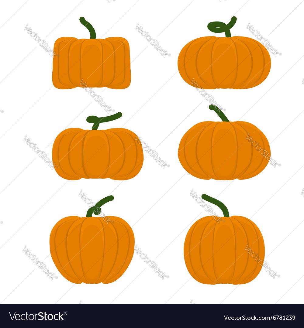Set different pumpkins Vegetables for Halloween