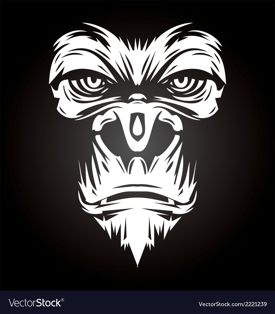 White Gorilla Face vector image