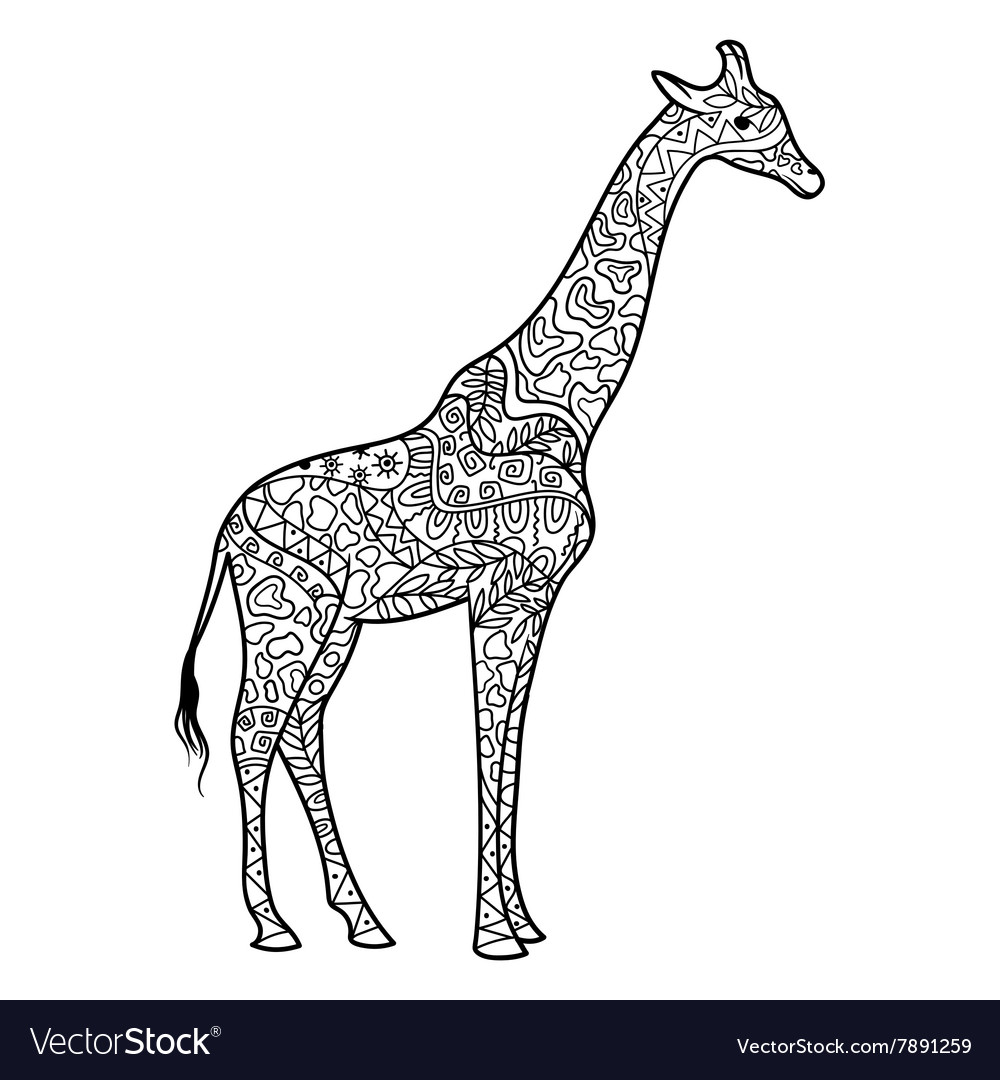 Giraffe coloring book for adults Royalty Free Vector Image