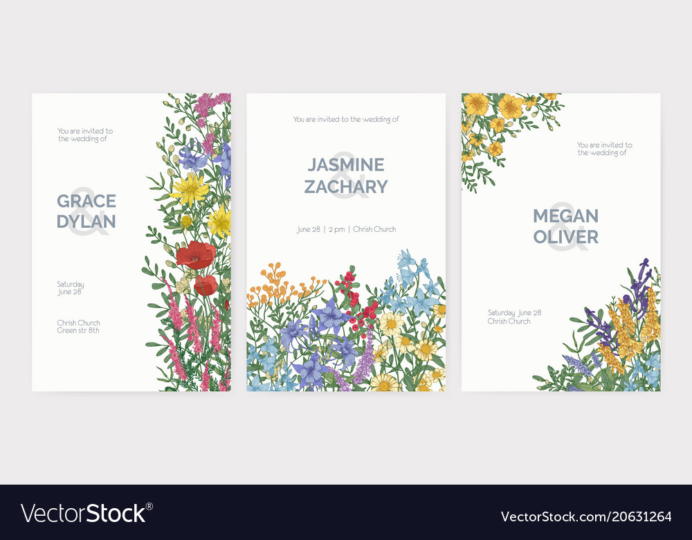 Collection of wedding party celebration invitation