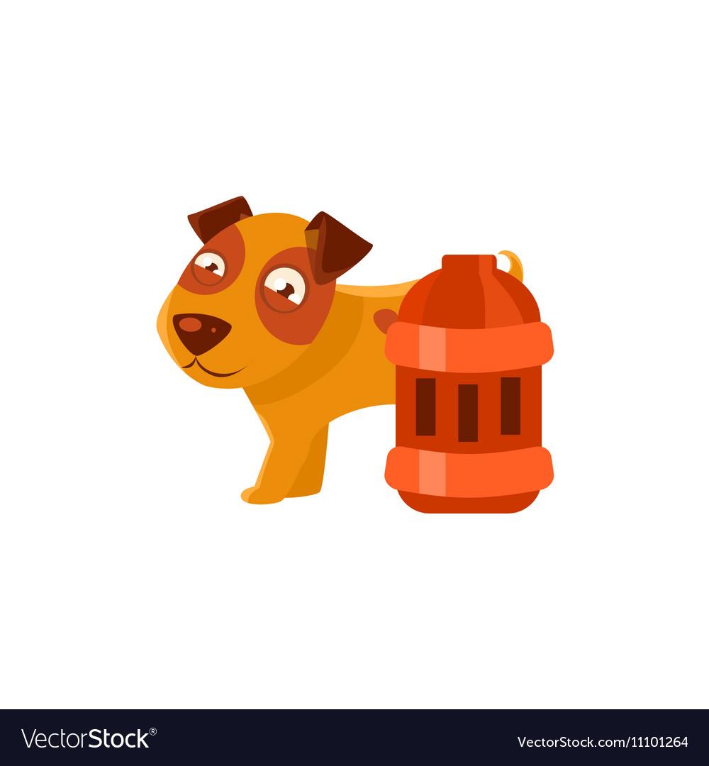 Puppy Next To Vintage Red Lantern