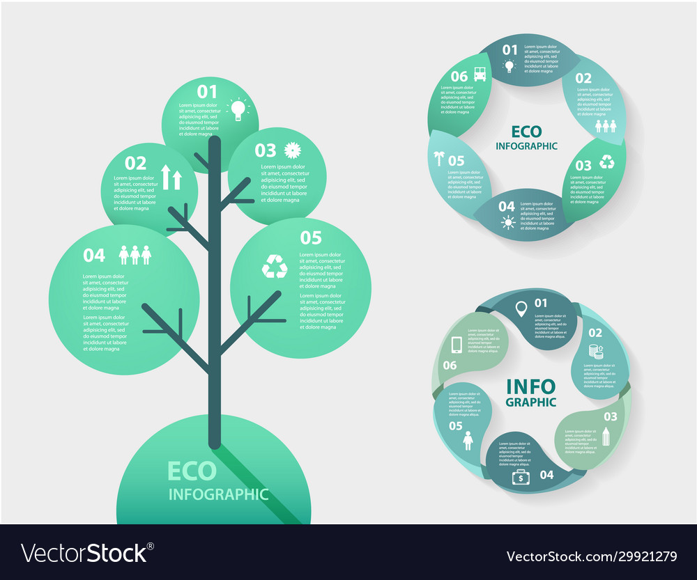 Circle nature infographic tree template