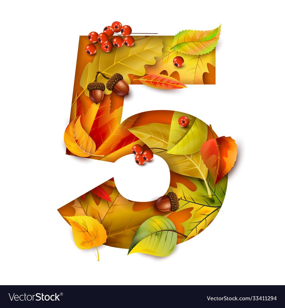 Autumn stylized alphabet with foliage digit5