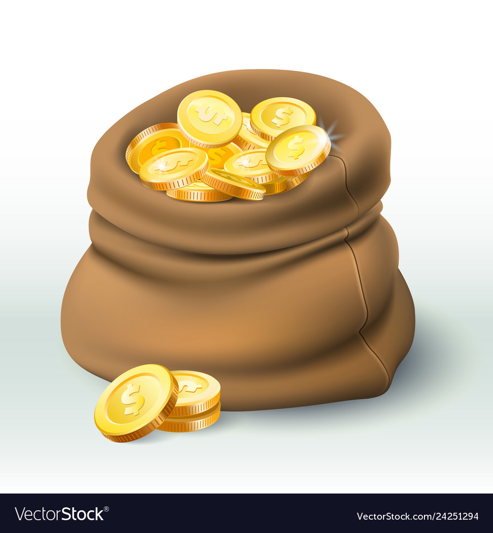 Gold coins bag golden coin wealth big cash sack