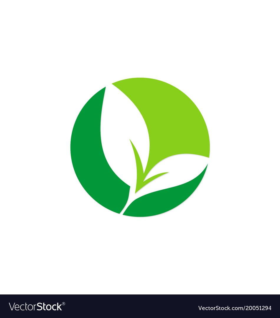 Green leaf seed plant logo