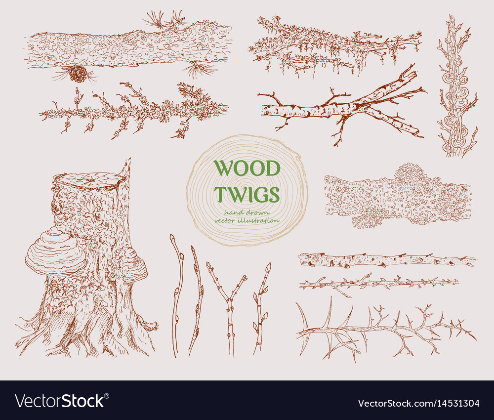 Hand drawn wood branches set