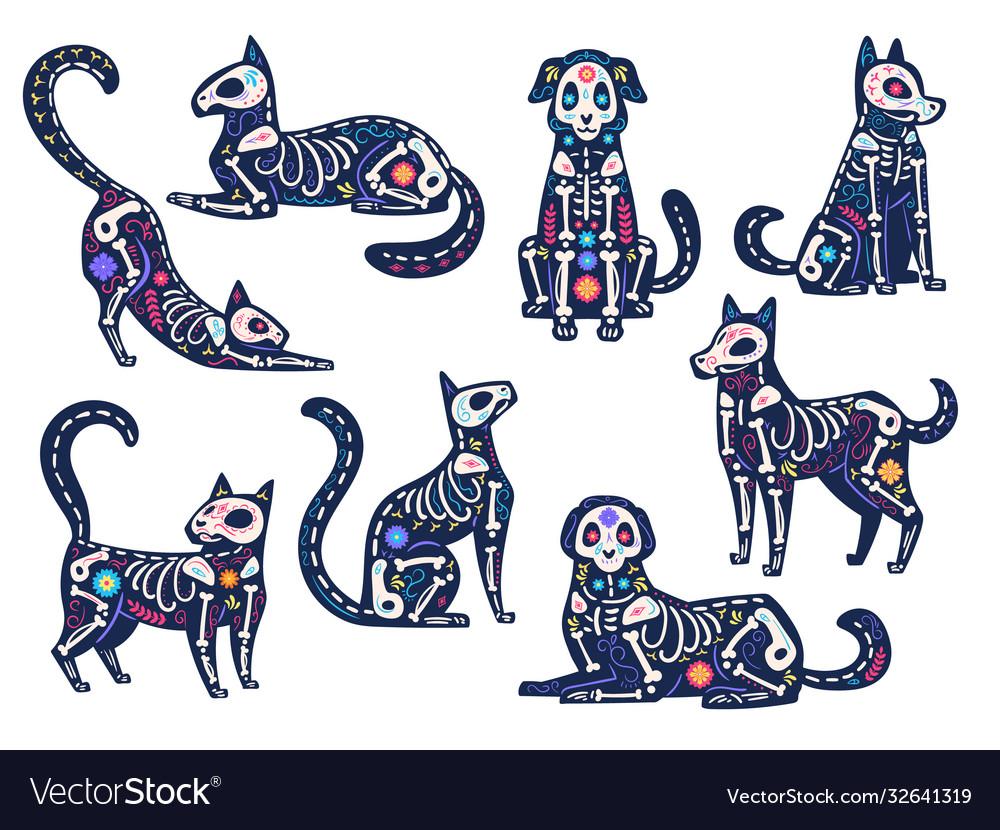 Day animals dia de los muertos cats and dogs