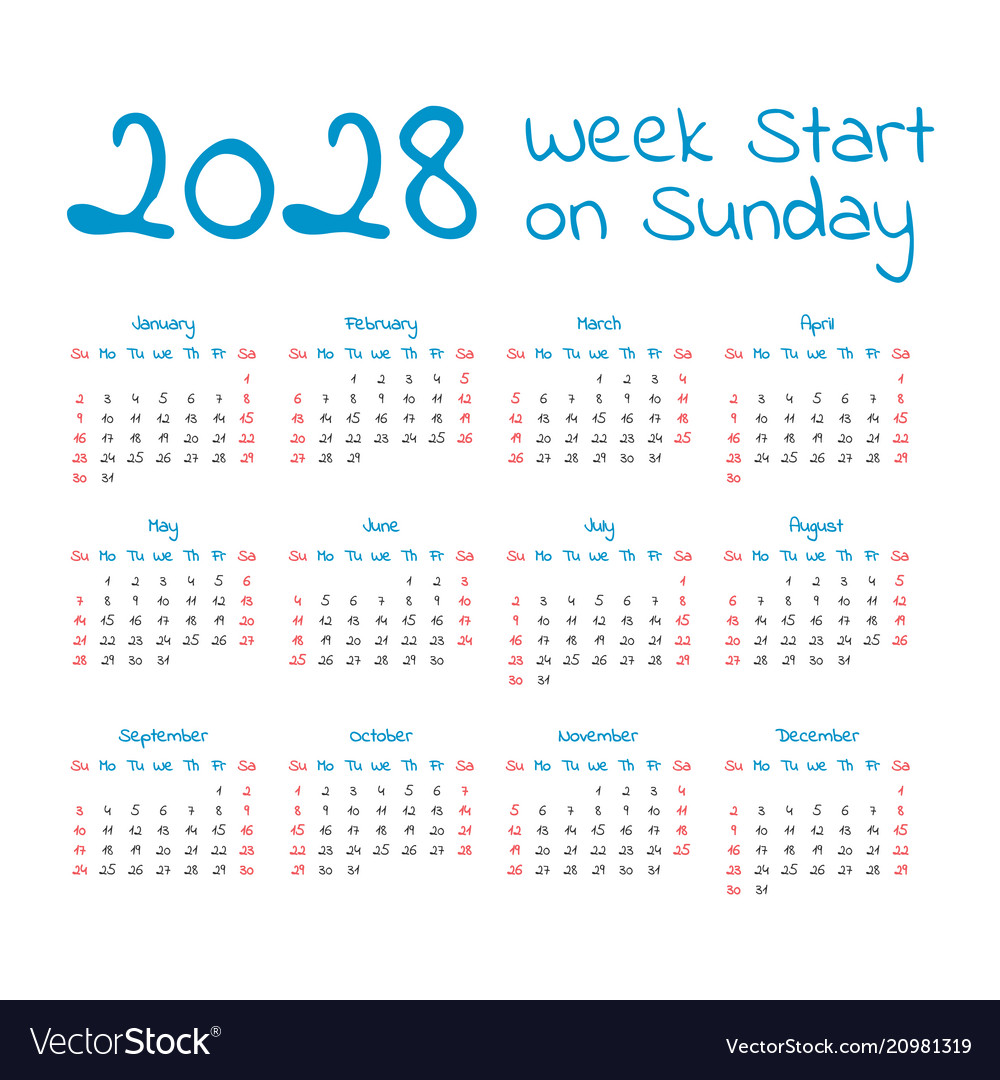 Simple 2028 year calendar vector image