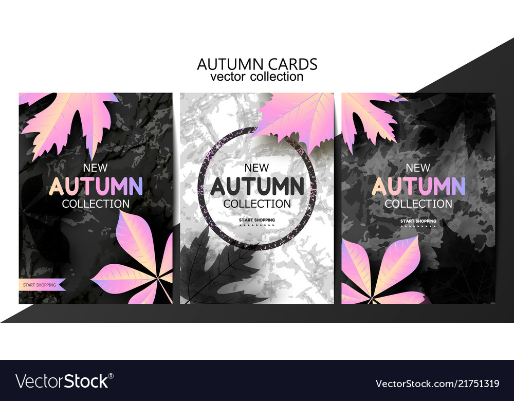 Trendy autumn background with leaves and marble