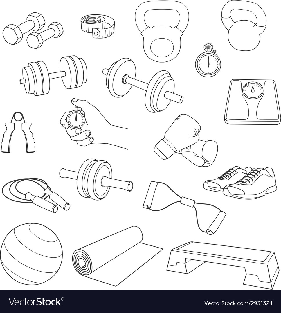 Hand drawn set of fitness accessories Dumbbells vector image