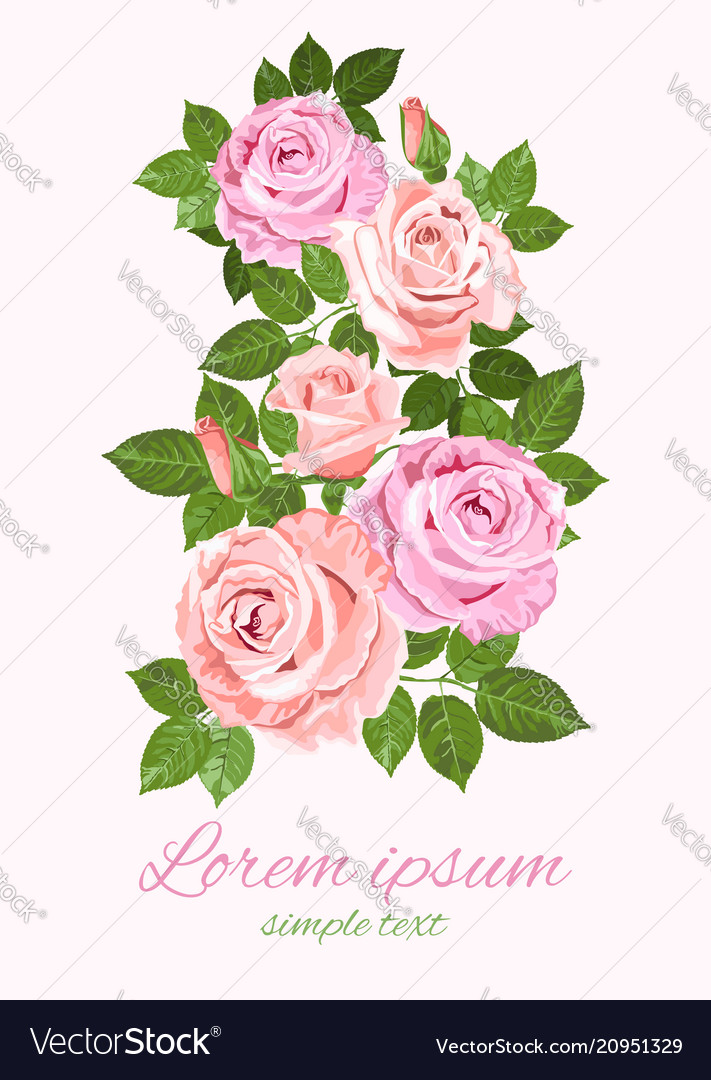 Pink and beige roses and green leaves greeting