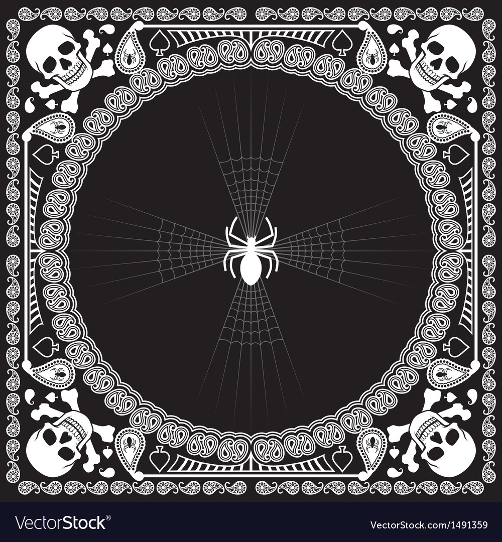 Bandana pattern skull and spider vector image