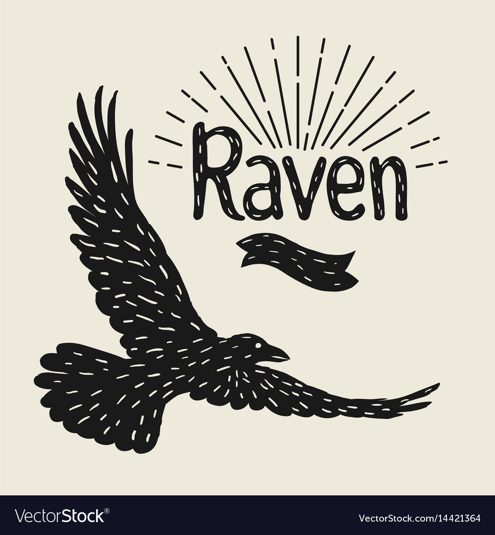 Background with black flying raven hand drawn vector image