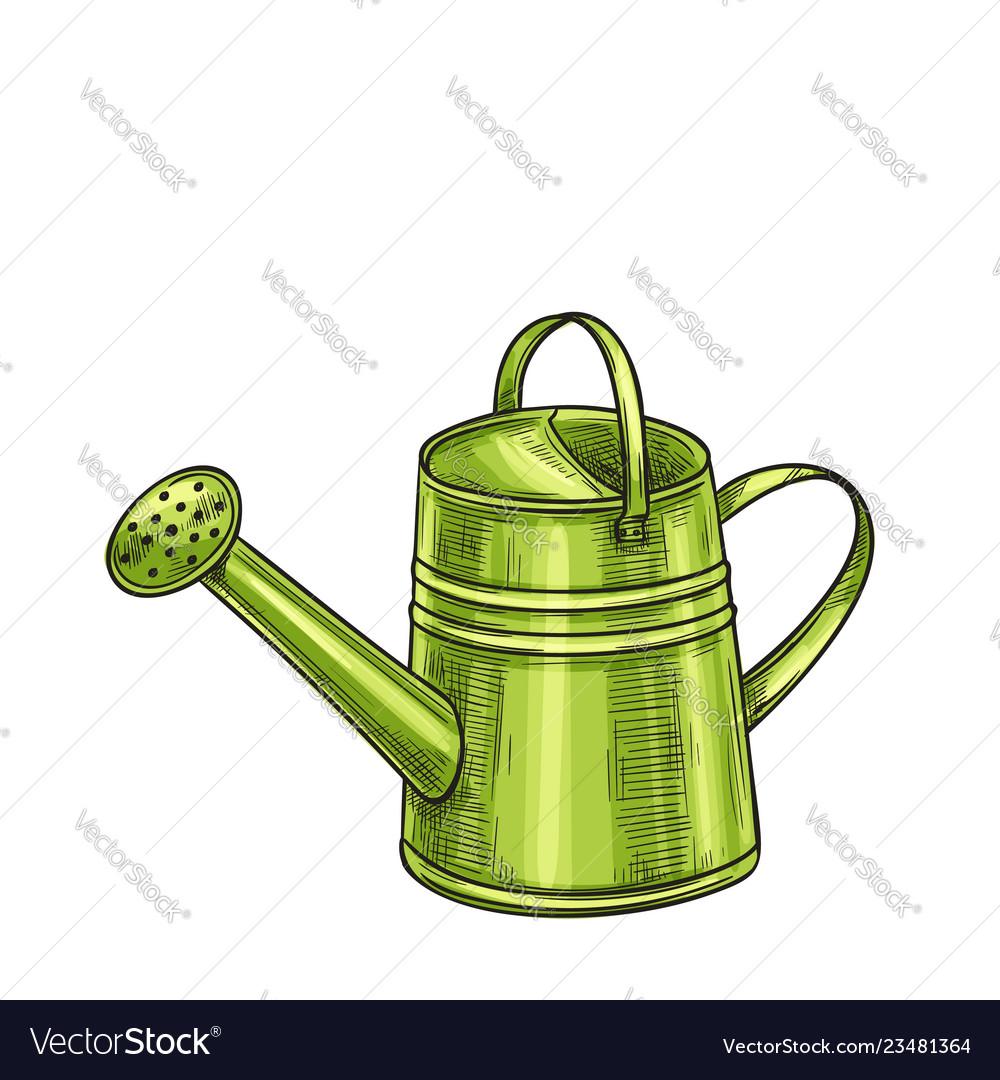 Garden metal watering can