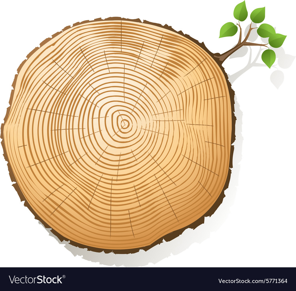 rings tree royalty image vector vectorstock free
