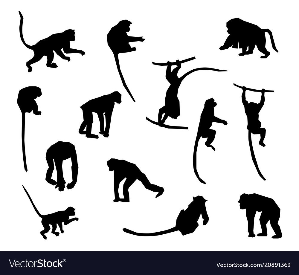 Ape and monkey collection - silhouette