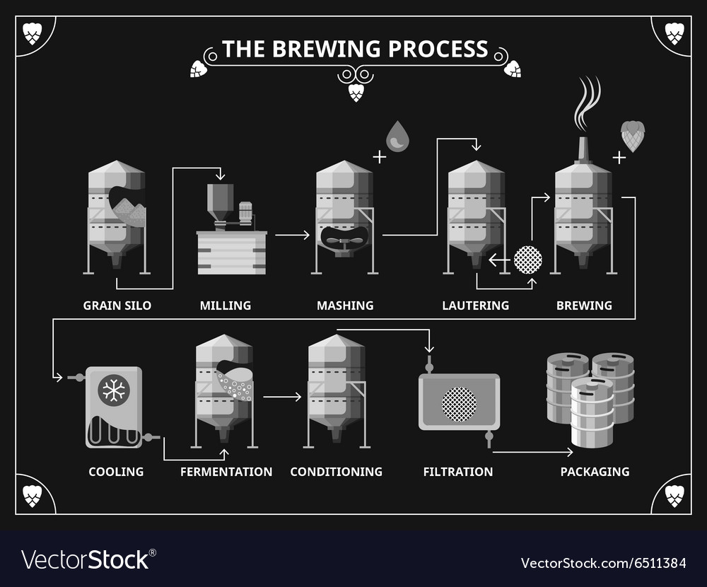 Beer brewing process beer production