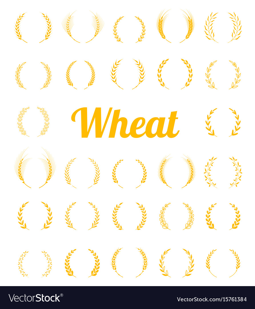 Gold laurel wreath - a symbol of the winner