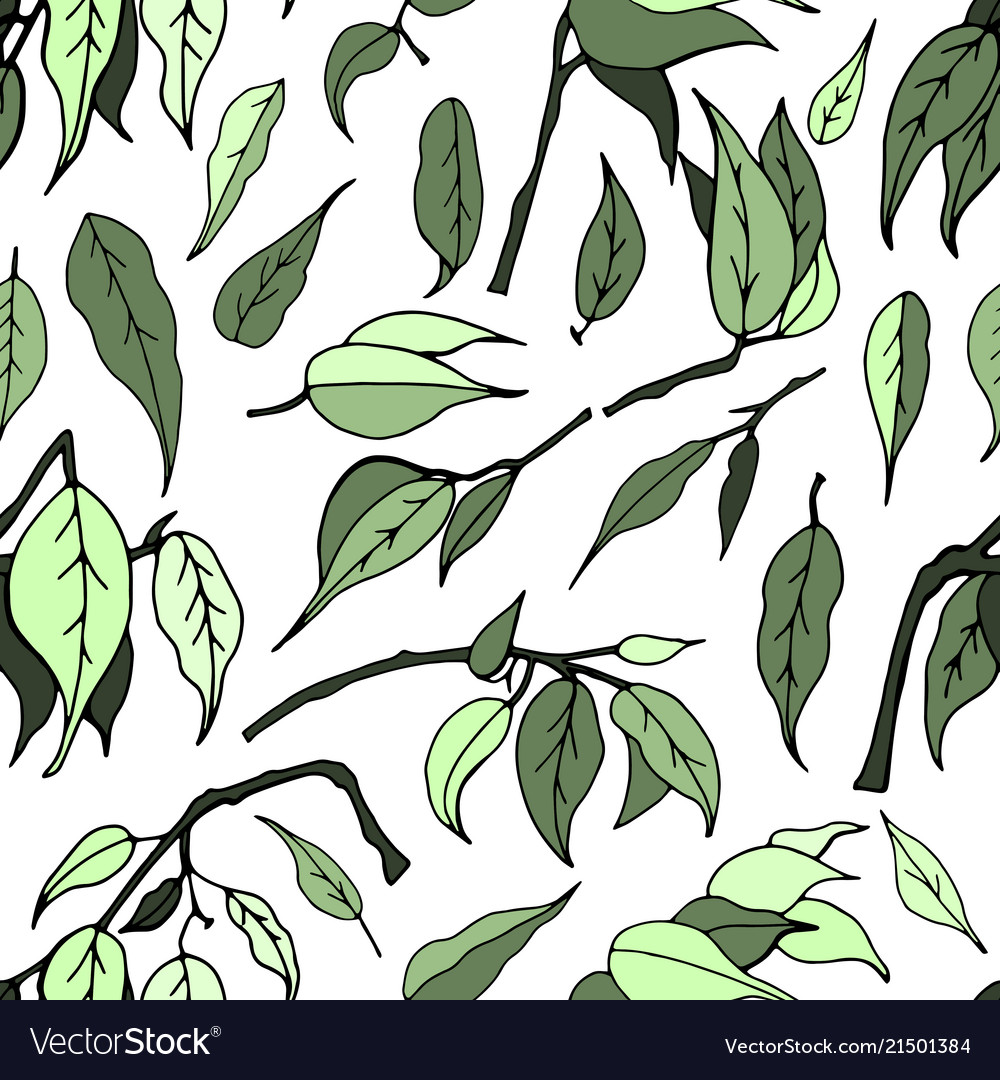 Seamless pattern with leaves of ficus benjamin
