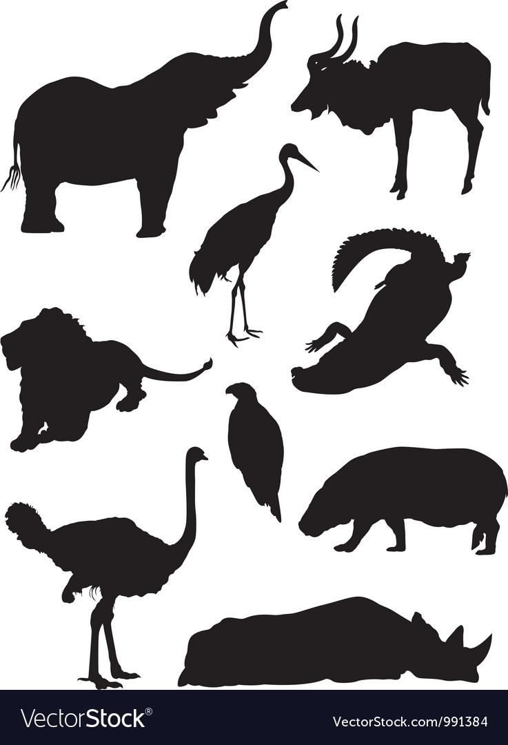 Zoo animals silhouette