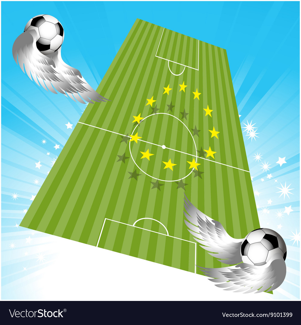 Flying football soccer pitch and balls vector image
