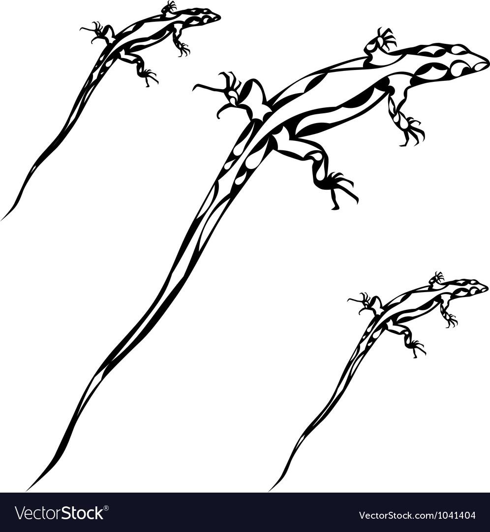 Lizard silhoutte vector image