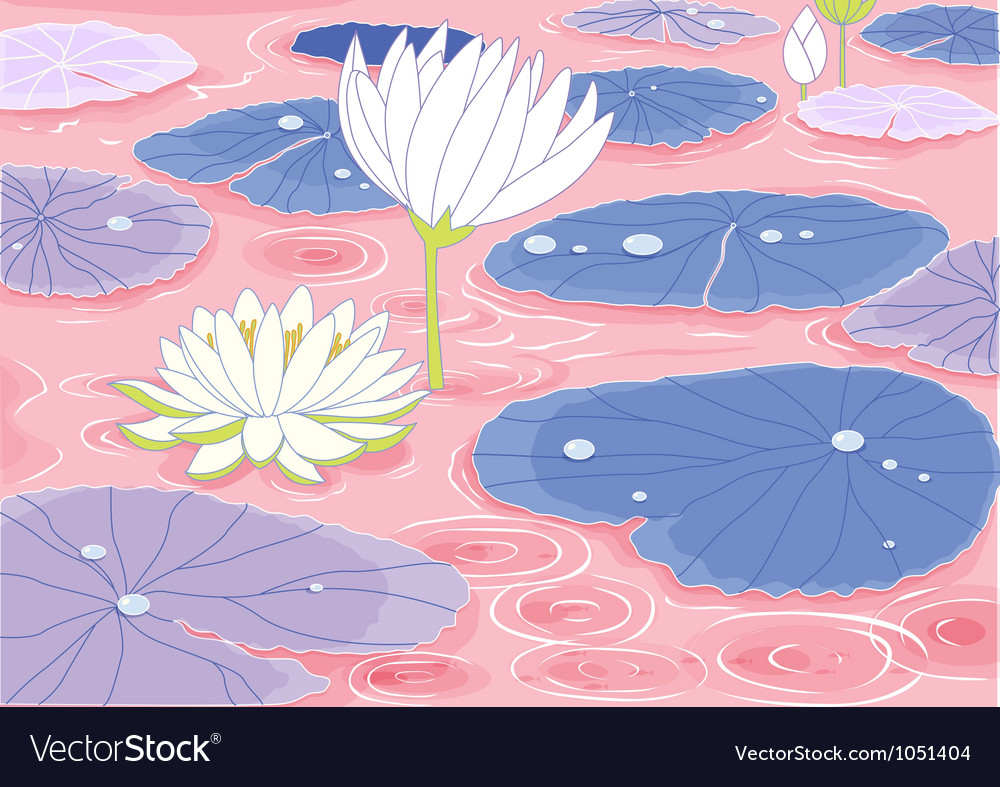 Pond With Lotus Flowers Royalty Free Vector Image