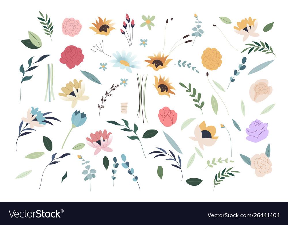 Set summer flowers set flat spring flower
