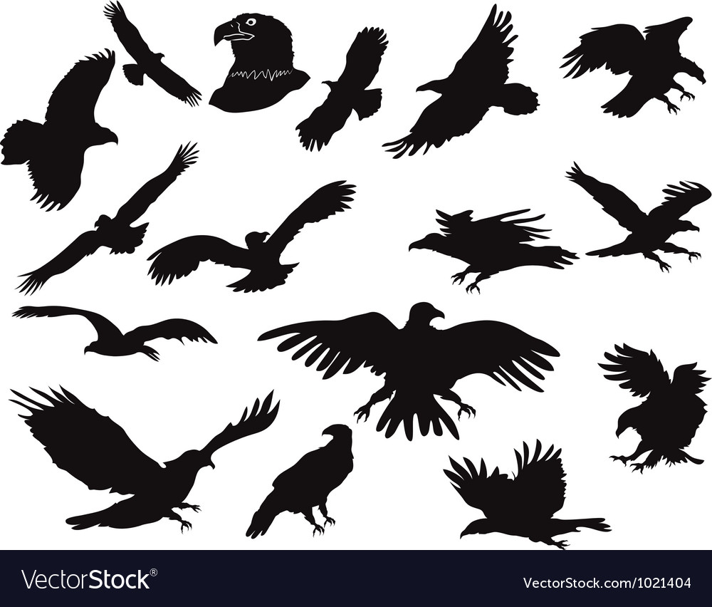 Silhouette Of Eagles Royalty Free Vector Image