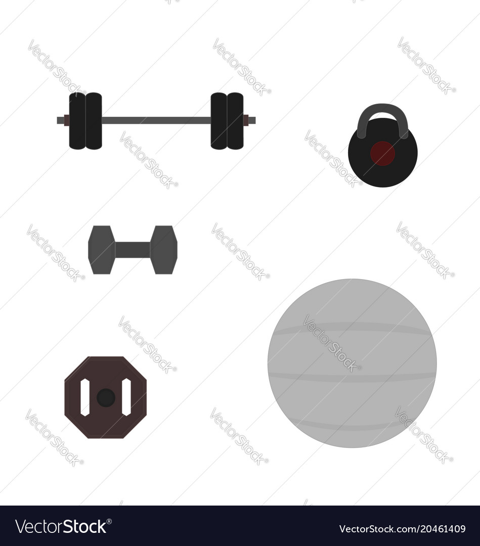 Fitness tool flat icon vector image