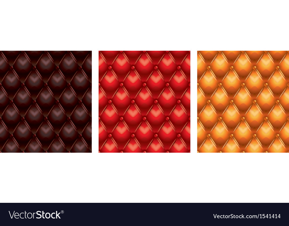 Leather set vector image