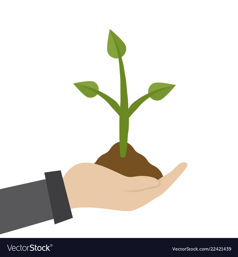Farmer or gardener hold a