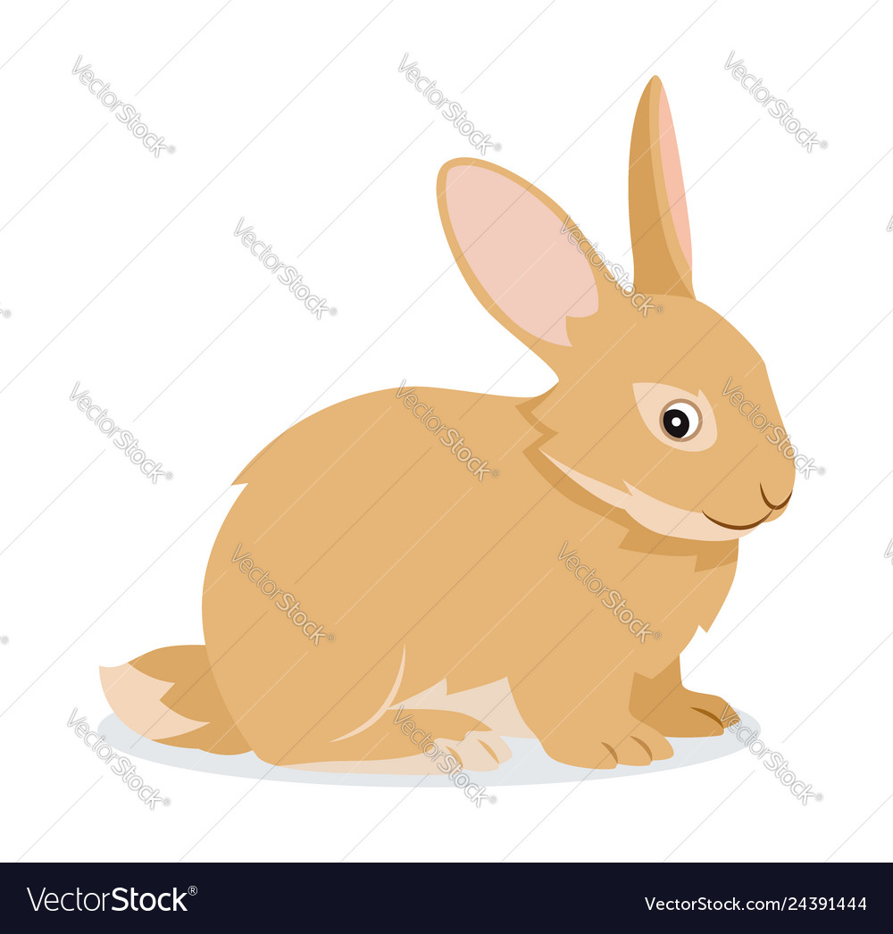 Cute rabbit icon isolated small fluffy pet