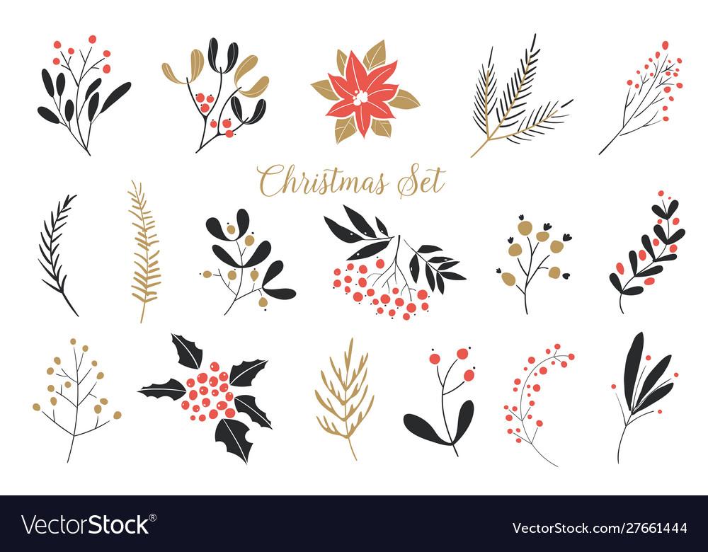 Elegant christmas graphic set set plants with