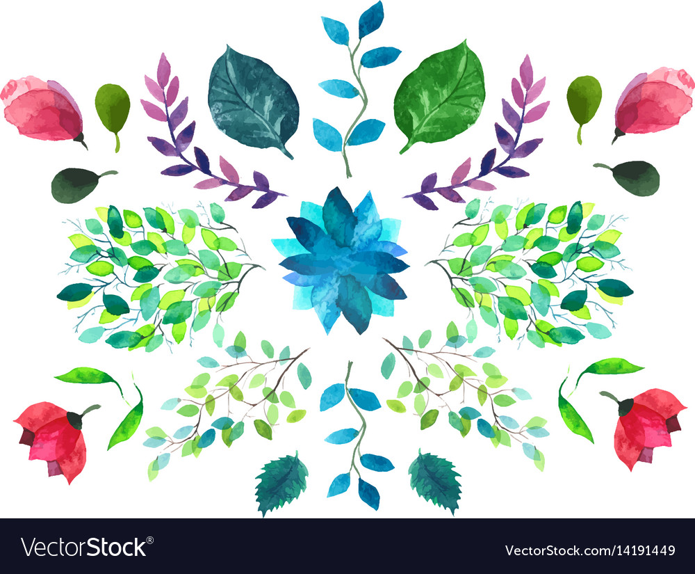 Flowers and leaves watercolor vector image