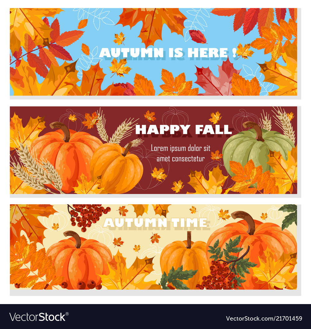 Autumn banners set fall leaves and pumpkin