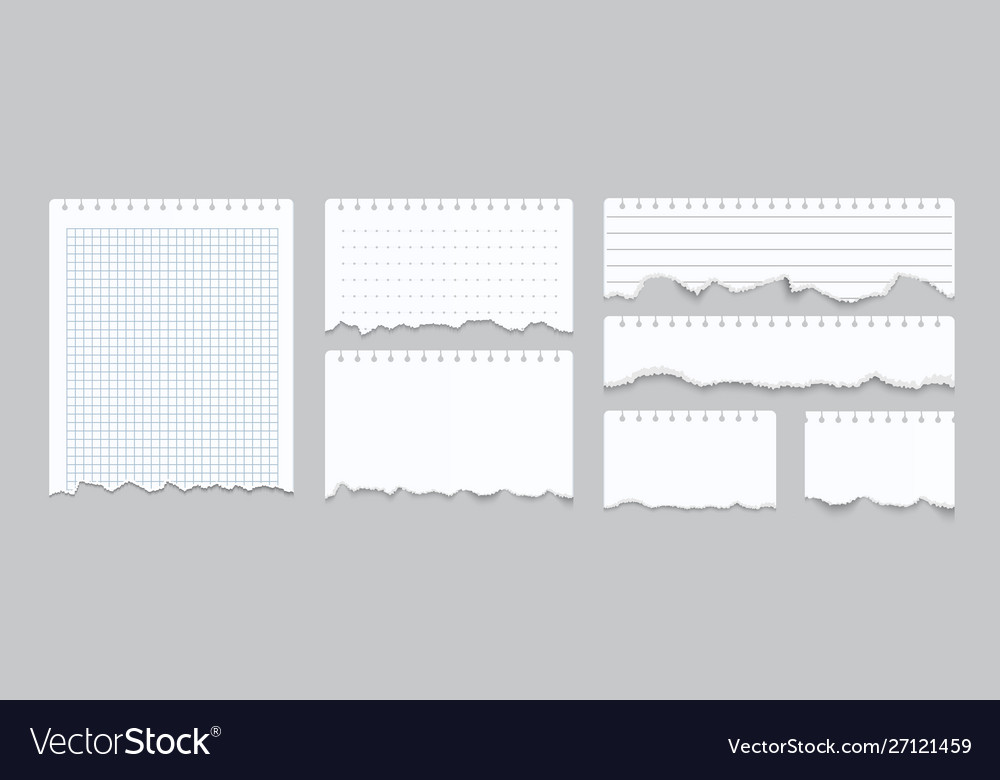 Torn notebook papers realistic blank gridded