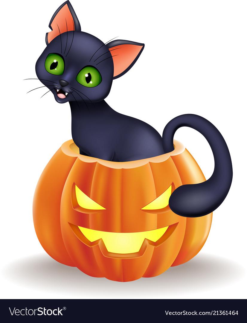 Cartoon black cat sitting in halloween pumpkin