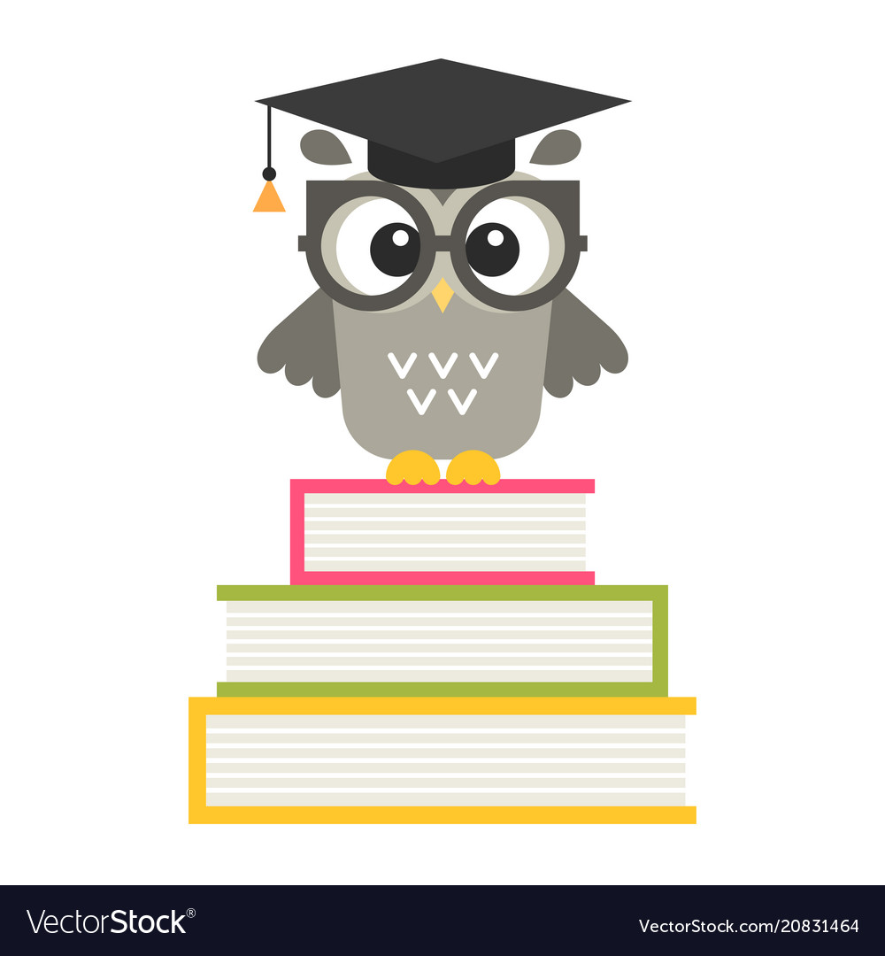 Cute owl on the books isolated on white