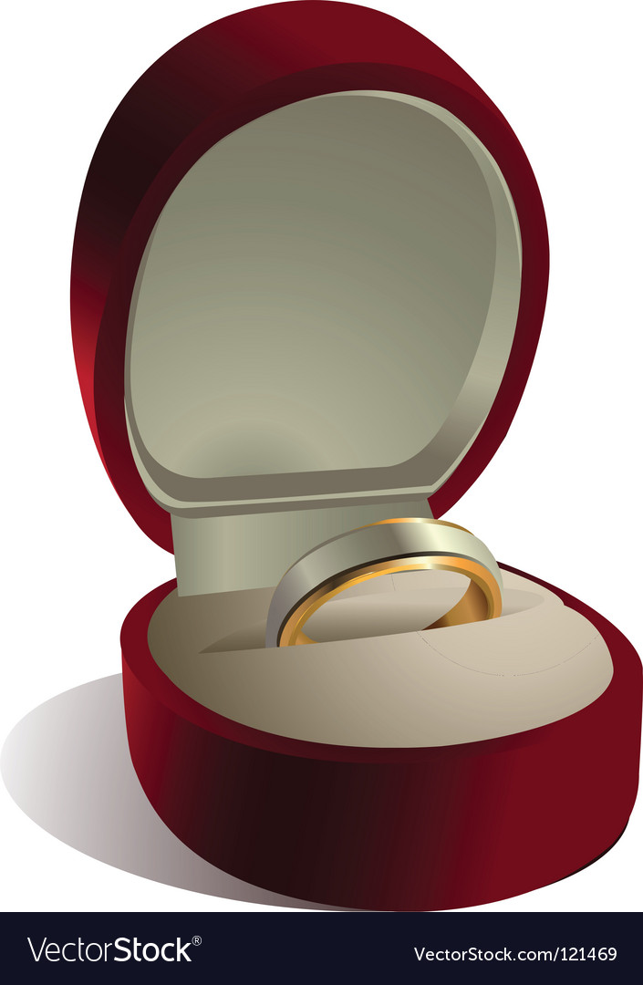 Wedding ring in box vector image