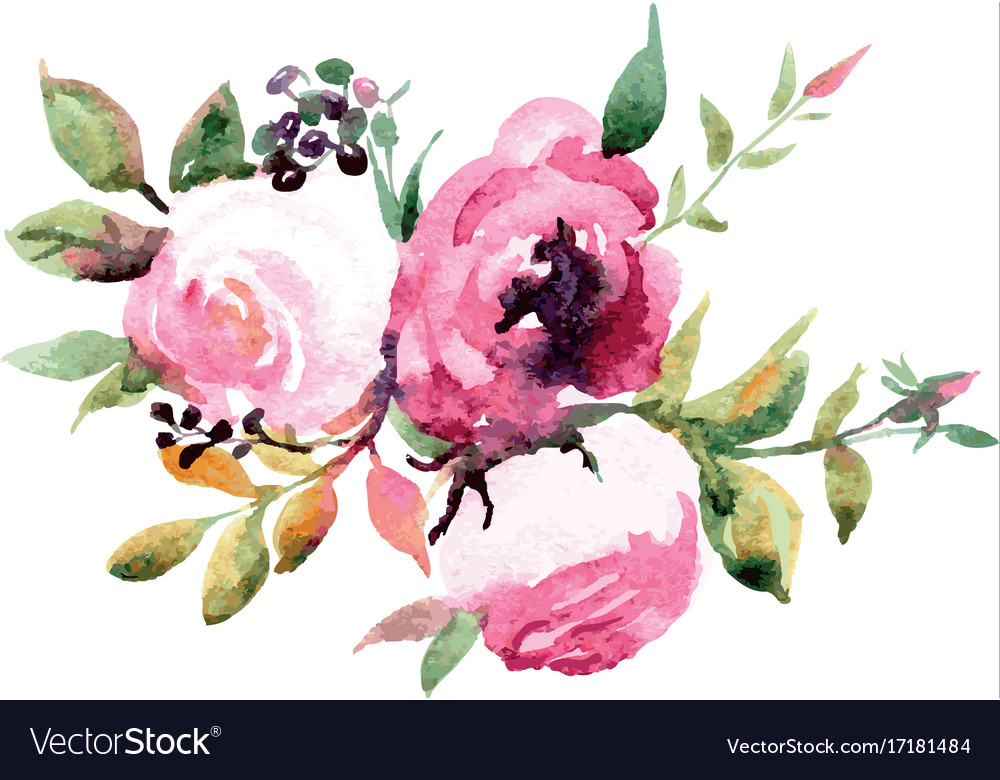 Bouquet of flowers watercolor Royalty Free Vector Image