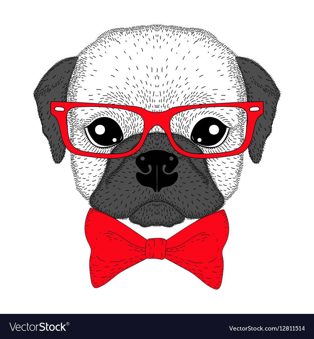 Cute french bulldog boy portrait with bow tie vector image