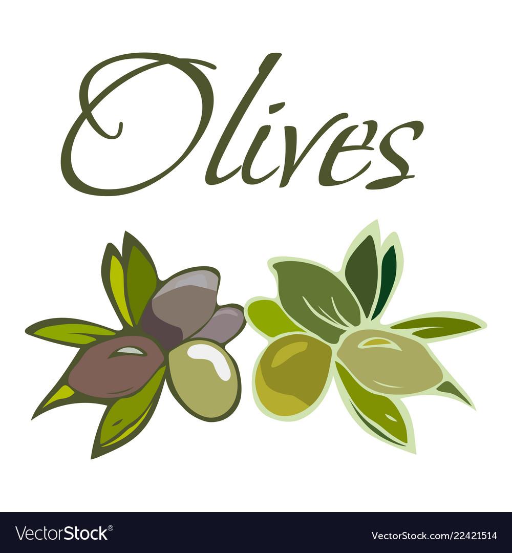 Tasty veggies olives
