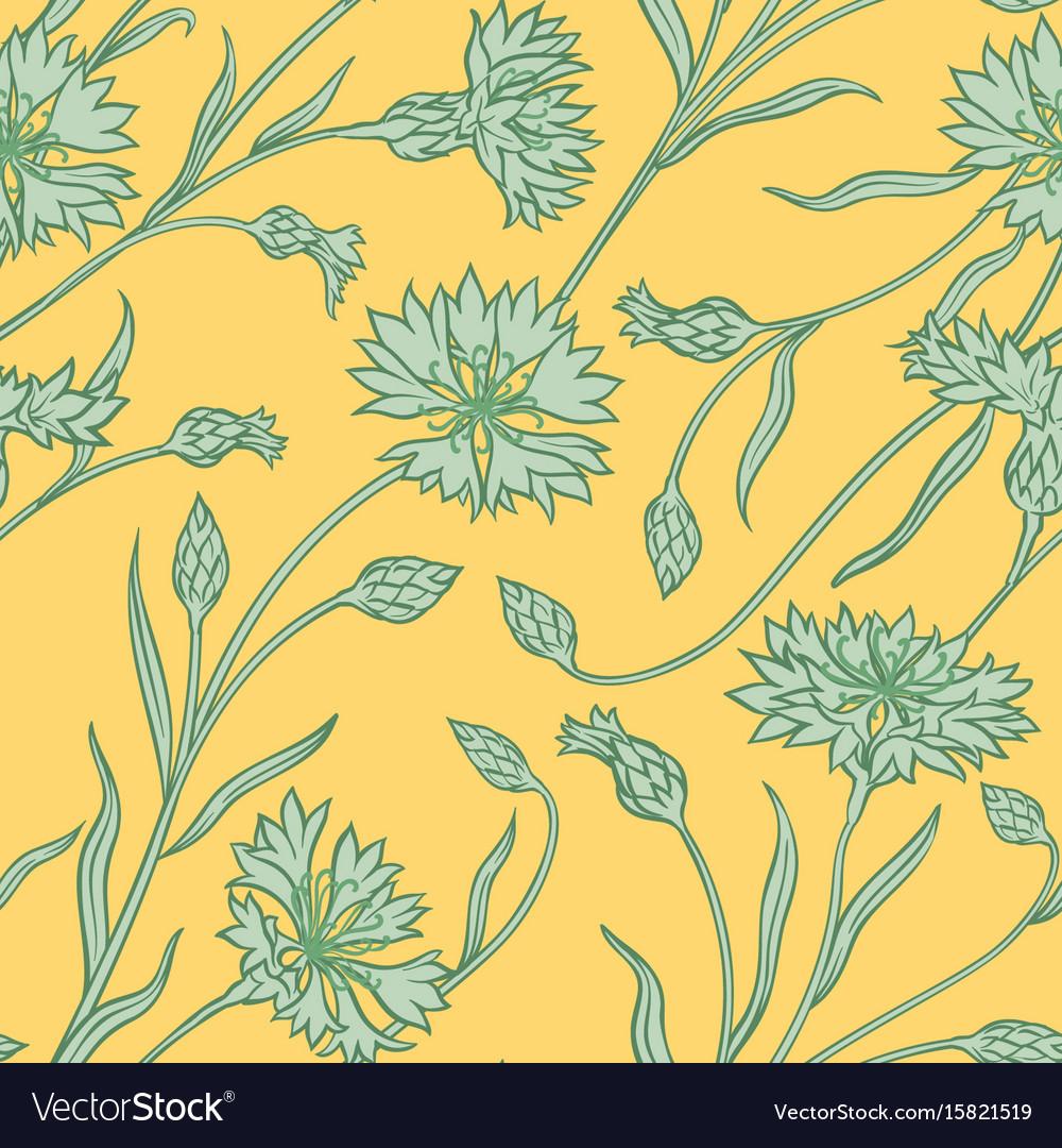 Cornflower Pattern Royalty Free Vector Image Vectorstock