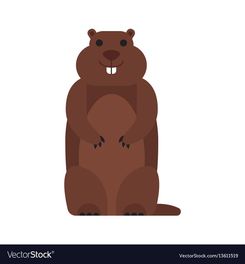 Flat style of marmot