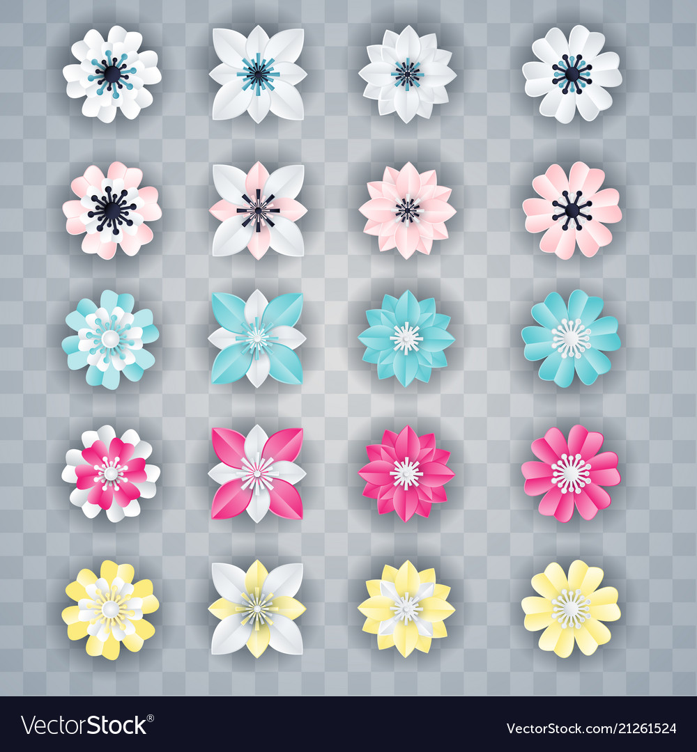 Set white colorful flowers