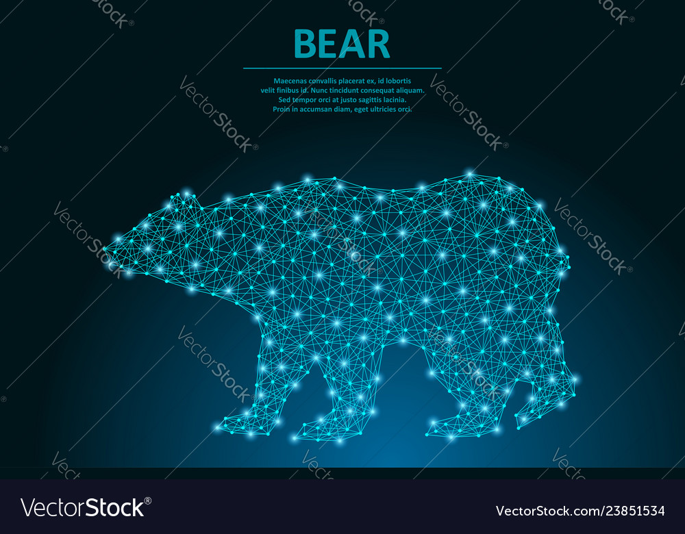 Bear made by points and lines polygonal wireframe