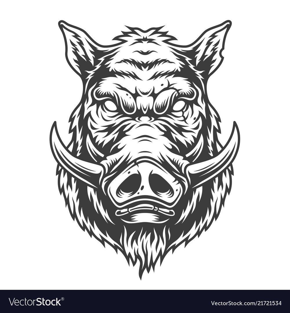 Boar head in black and white color style