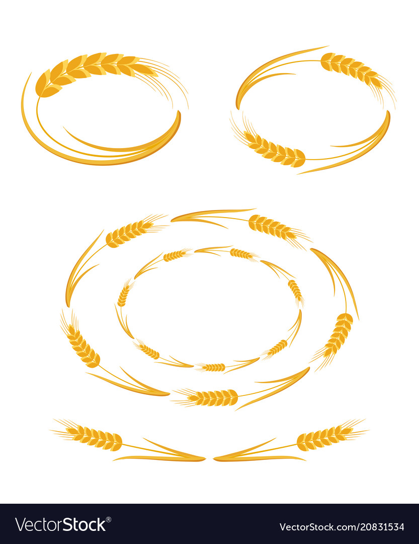 Wheat ears frames set
